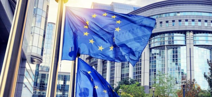 欧州議会、人権デューデリジェンスの義務化に向けて強いシグナル発信 ...